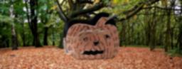 Ideas DIY - Bolsa para detalles de Halloween